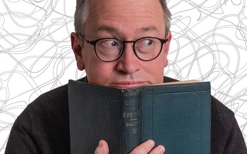 ROBIN INCE: 'CHAOS OF DELIGHT'