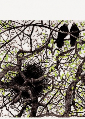 FAITH CHEVANNES - Spring Rooks From A Worm's Eye View