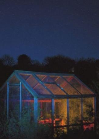 JUDITH JONES In The Night Garden