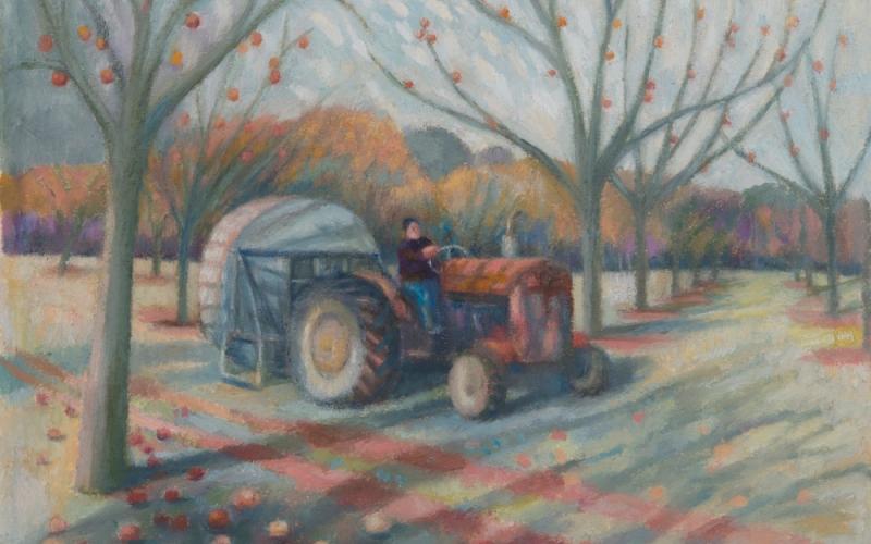 KATE LYNCH: FARM