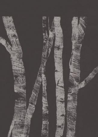 LIN HAWKINS - Trees, Paper, Trees 1
