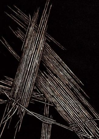 SUSAN GRADWELL - Linear