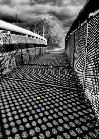 TERRY BUGDEN Langport Bridge